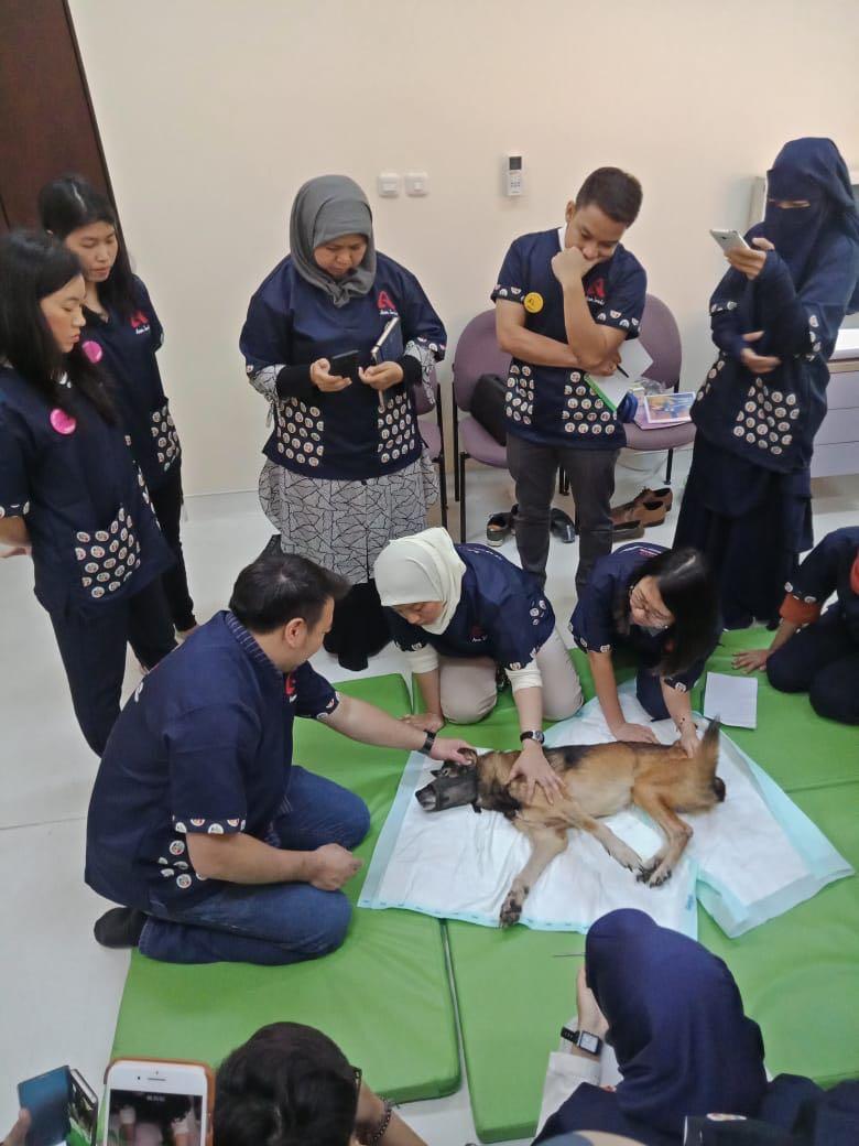 Diagnosis penyakit anjing di poliklinik RSHP FKH IPB saat workshop untuk dokter hewan