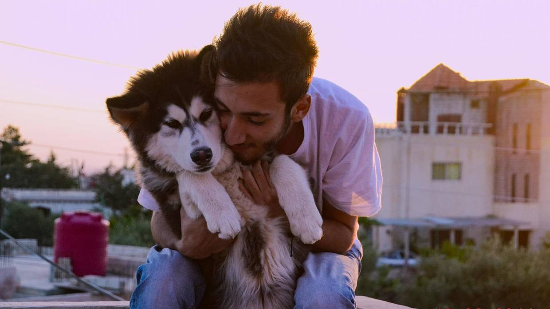 Zeus: Kisah Haru Reuni Anjing Suriah dengan Pemiliknya